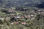 Θέα Κοπάνης